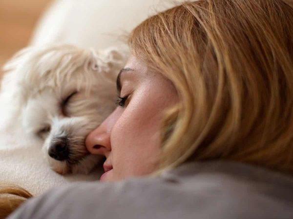 Γιατί ο σκύλος μου θέλει να κοιμάται μαζί μου;